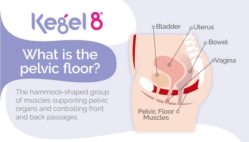 What is the Pelvic Floor Kegel8