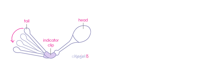Kegel8 Vaginal Cones Have a Unique Indicator Tail to Show When You Are Doing Kegels Correctly!